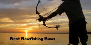 Best Bowfishing Bows of 2020