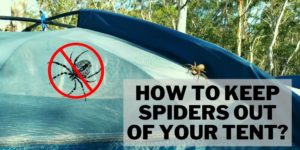 How to keep spiders out of your tent